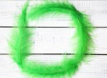 Vår eller easter ram med gröna fjädrar Arkivbild