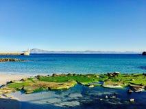 Vår för kontinenter för vattenhavsstrand Royaltyfria Bilder