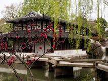 Vår i ödmjuka administratörs trädgård, en av de mest berömda klassiska trädgårdarna av Suzhou royaltyfri fotografi