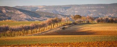 "Vår i Castile†""La Mancha, Spanien Arkivbilder"