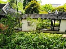 Vår i den klassiska Suzhou trädgården, Kina royaltyfri fotografi