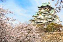 Vår i den Osaka slotten Royaltyfria Foton