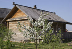 Vår i den ryska byn Arkivbilder