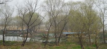 Vår i Gaoyou sjön royaltyfria foton