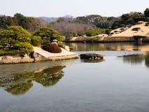 Vår i japanträdgård Arkivfoto