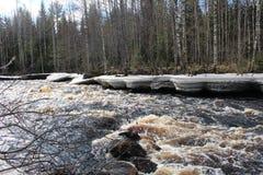 Vår i Karelia Flod Arkivbild