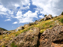 Vår i Krim Arkivfoton