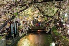 Vår i Kyoto, Japan Royaltyfri Foto