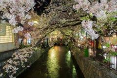 Vår i Kyoto, Japan Arkivfoto