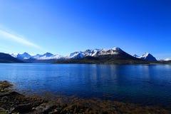 Vår i norr og Norge Arkivbild