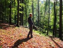 Vår i skogen Royaltyfria Bilder
