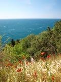 Vår nära havet Arkivfoto