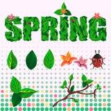 Vår- och sommaruppsättning av text, blommor, sidor och nyckelpigan Royaltyfria Bilder