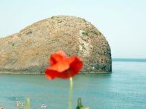 Vår på Blacket Sea Arkivfoto