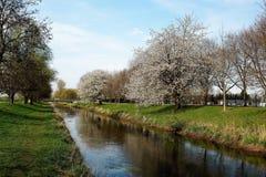 Vår på floden Niers Arkivfoto