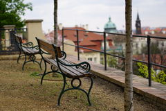 Vår Prague Royaltyfri Fotografi