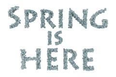 Vår Quilling bokstav för vårtema från quilling stilsortssamling Hälsningar fjädrar Arkivbilder