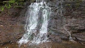 Vår Rusyliv som applåderar vattenfallet stock video