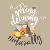 Vår som naturligt gör ren stock illustrationer