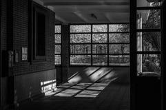 Vår som skriver in till och med fönstret Arkivbilder