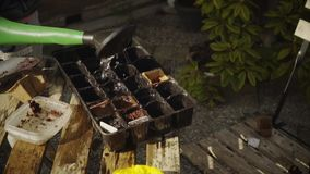 Vår trädgårds- working Bevattna blommor stock video