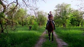 Vår utomhus, flickaryttare, jockeyridning på fullblods- härlig brun hingst, till och med det gamla blomstra äpplet lager videofilmer