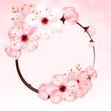 Vårbakgrund med rosa färgblomningblommor Illustration för vektor 3d Härligt vernal blom- baner, affisch, reklamblad Royaltyfri Bild