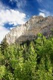 Vårberglandskap Nevada Arkivbilder