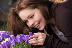 Vårblomma royaltyfri foto