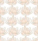 Vårblommamodell Royaltyfria Bilder