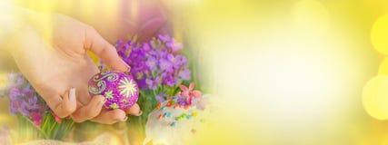 Vårblommor, påskkaka och easter ägg baner färgrika easter Royaltyfri Foto