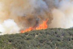 Vårbrand ~ 2013 ~ den annalkande kulleöverkanten #0 för brand Royaltyfri Foto