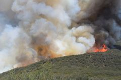 Vårbranden ~ 2013 ~ flammor som når Ridgen Royaltyfria Bilder