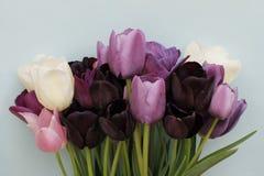 Vårbukett av färgrika tulpan på ljus - blå bakgrund Royaltyfri Foto