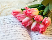 Vårbukett av tulpan Royaltyfri Fotografi