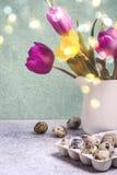 Vårbukett av tulpan och påskliljor tillgänglig hälsning för korteaster eps mapp Royaltyfri Foto