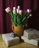 Vårbukett av tulpanfotoet Arkivbilder
