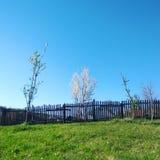 Vårbygdlandskap - fridsam blå himmel arkivbilder