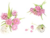 Vårcollage med rosa tulpan Fotografering för Bildbyråer