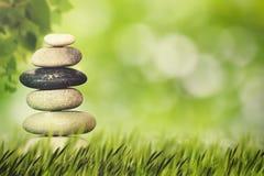 Vård- och naturlig harmonibegrepp för Wellness, Arkivfoton