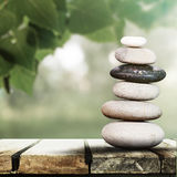 Vård- och naturlig harmonibegrepp för Wellness, Royaltyfri Bild