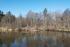 Vårdag, Abava flod, Lettland Arkivbilder