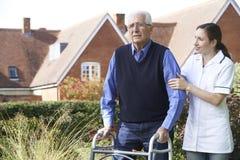 Vårdare som hjälper den höga mannen att gå i trädgård genom att använda gå ramen Royaltyfria Bilder