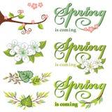 Vårdekoruppsättning Gräsplansidor, filialer, blommar stock illustrationer