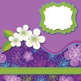 Vårdesignmall. Körsbäret blommar bakgrund Royaltyfri Illustrationer