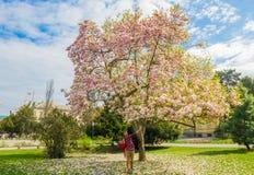 Våren är full av förälskelse Royaltyfri Fotografi