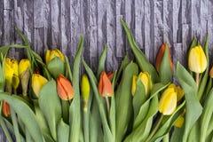 Våren blommar buketten av gula och röda tulpan och påskliljor på en grå bakgrund, Arkivbilder