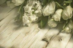 Våren blommar buketten av vita tulpan och hyacinter Fotografering för Bildbyråer