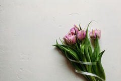 Våren blommar dag för ` s för tulpankvinnakvinnor Arkivfoto