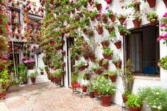 Våren blommar garnering av den gamla husuteplatsen, Cordoba, Spanien Fotografering för Bildbyråer
